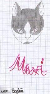 Kätzchen Maxi gemalt von Sophie